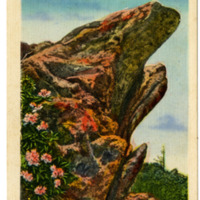 The Blowing Rock Postcard
