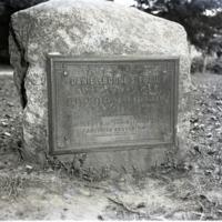 Pal-Bla-1-191.jpg