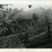 Holy Cross Church and Apple Blossoms, Spring 1941