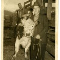 Unknown Man Roping A Calf