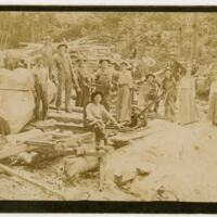 Logging In Ashe County